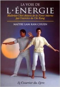 Couverture d'ouvrage: La Voie de l'énergie