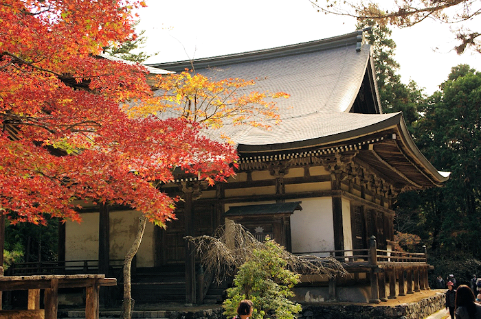 Tokyo shiatsu stage